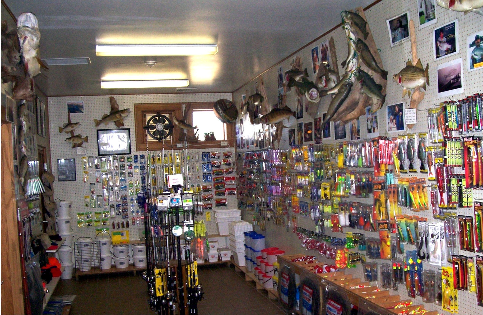 Fishing bait and tackle for Fishing equipment stores